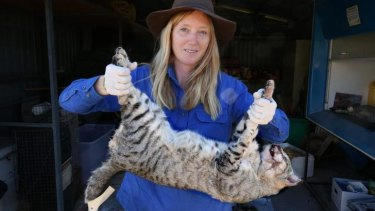 Dr Katherine Moseby holds a dead feral cat. Her husband, John Read, has invented a new cat-control device.