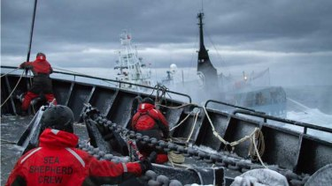 Sea Shepherd conservationists said their ship was attacked by Japanese whaler Nisshin Maru in the Antarctic.