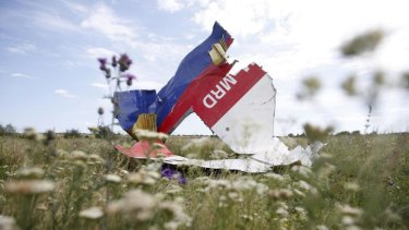 Part of the wreckage of Malaysia Airlines Flight MH17.