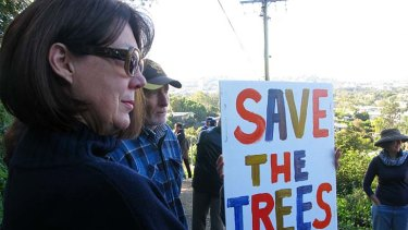 Protesters rally near the fig trees in Windsor.