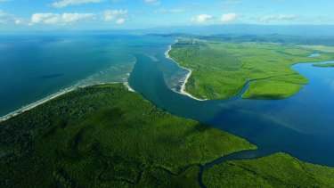 Areas such as Daintree National Park will be assessed by scientists.