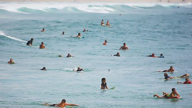Surfers hit the water on the Gold Coast around the estimated tsunami arrival time, defying pleas from authorities to stay out of the water and away from beaches.