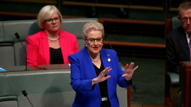 Former speaker Bronwyn Bishop delivers her valedictory speech in the House of Representatives on Wednesday.