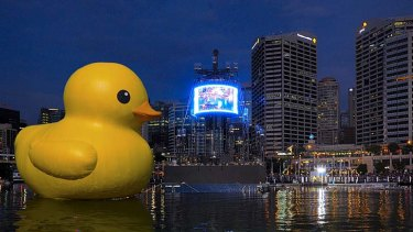 Size matters … an artist's impression of what Florentijn Hofman's rubber duck will look like in Darling Harbour.