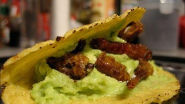 "Locust taco ... great for kids. Photo by <a href=""http://www.flickr.com/photos/blogjam/2343953892/"">Fraser Lewry.</a>"