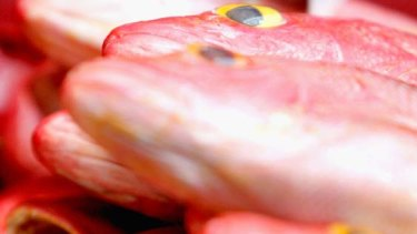 Queensland's snapper stocks are depleted, according to the state government.