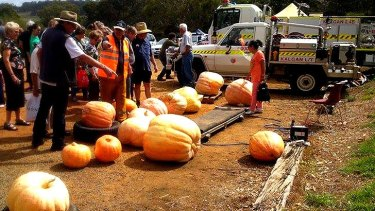The community comes together to celebrate everything gourd.