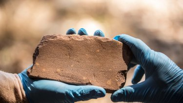 The discovery of this axe-head grindstone inside the Kakadu National Park has rewritten the history of Australia.