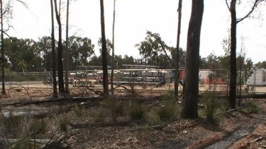 Exposed: Contamination from gas operations in Pilliga Forest.