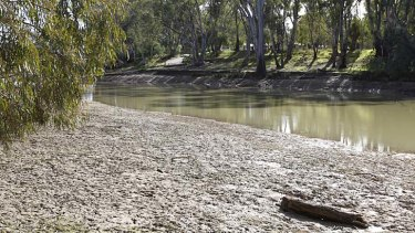 Edward River: Residents of Deniliquin will be thankful for the river's cool relief after the town notched up a blistering 44.3 degrees on Tuesday.