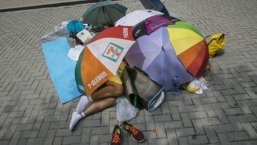 Umbrella revolution: A student protester sleeps under umbrellas during a quiet moment.