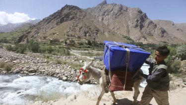 An boy and his donkey carry a ballot box to a remote area of Panjshir province, north of Kabul.