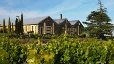 Wynns Coonawarra estate where innovative vineyard methods pay off.
