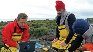 New Australian Antarctic Division director Nick Gales (left) with other scientists tagging a seal on Heard Island.