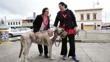 In touch: Cathy McGowan gives a constituent's pooch a pat in Beechworth.