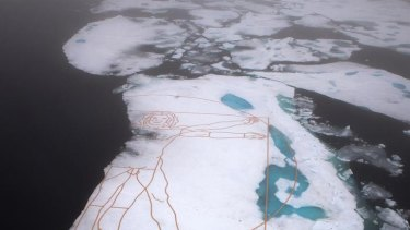 Environmental activist and artist John Quigley's re-creation of Leonardo da Vinci's <i>Vitruvian Man</i> last month. It was commissioned by Greenpeace to highlight the melting Arctic sea ice.