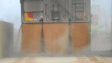 Grain dumping.