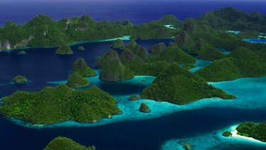 Strong currents that rush between the islands of West Papua's Raja Ampat (pictured) help seed much of the 1.6 billion hectares of reefs and marine life that spread from the Philippines to the Solomon Islands.