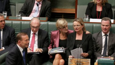 Foreign Affairs Minister Julie Bishop and Health Minister Sussan Ley during question time  on Wednesday.