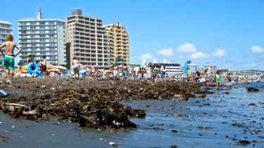Japan's Enoshima beach reeks with pollution making it impossible to feel refreshed on hot days.