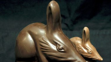 Endangered yet delicious...bilbies from Haigh's Chocolates.