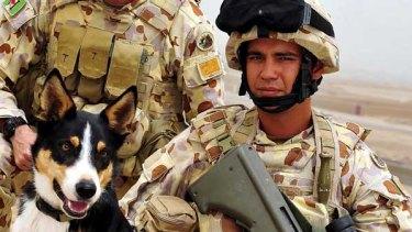 Sapper Darren Smith with explosive detection dog Herbie at Tarin Kowt.