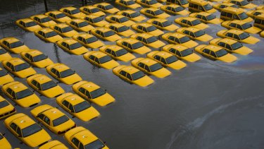 A parking lot full of yellow cabs  flooded in New York.