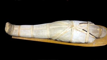 An adult mummy that will be on display at the Queensland Museum.