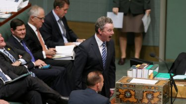 Leader of the House Christopher Pyne during question time on Wednesday.