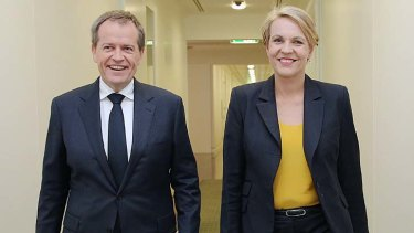 Opposition Leader Bill Shorten was joined by Deputy Opposition Leader Tanya Plibersek for the announcement. Ms Plibersek takes on foreign affairs in Labor's new frontbench.