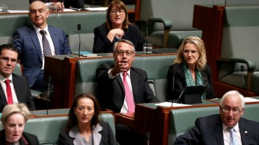 Wayne Swan during Question Time.