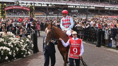 Red Cadeaux prior to this year's Melbourne Cup.