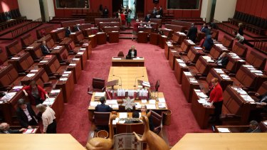 The Senate hears the debate on the government's higher education changes.