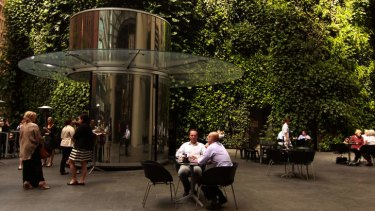 Unquenchable thirst: The established hanging garden at 1 Bligh Street.