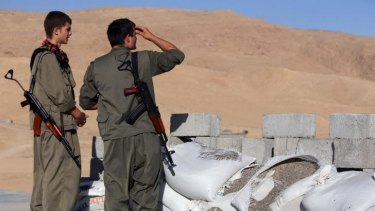 Kurdish groups from Iraq and three neighbouring countries are putting aside old rivalries to battle jihadist militants.