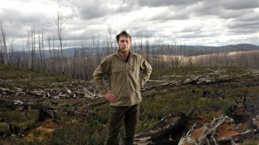 ANU researcher David Blair stands amid burnt timber in the Marysville State Forest, which has been denuded of old-growth because of wildfire.
