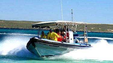 A photo of the Aqua Rush speedboat on the www.sharkbayssnorkel.com.au website.
