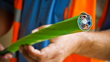 Techdrill is said to have been 'squeezed' after hiring staff and subcontractors for NBN work that never materialised.