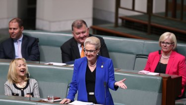 Bronwyn Bishop delivers her farewell speech to Parliament House on Wednesday.