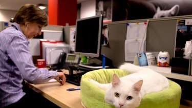 Robyn Watts and the office cat Monty who comes into the office every day.