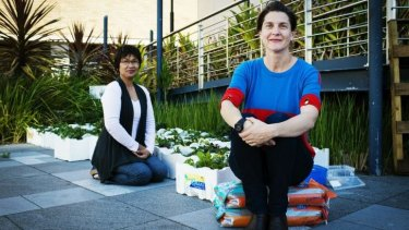 """Really beautiful colours"": Naty Millarez and Roise Dennis look on as workers construct <i>Democratic Garden</i>."