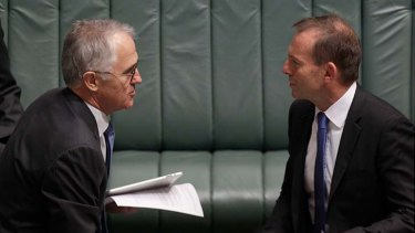 """Independent MP Tony Windsor said Malcolm Turnbull is """"head and shoulders"""" above Tony Abbott as an electable leader."""