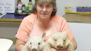 Double ... but not trouble: Val Salmon with the two white wombats.