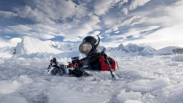 Researcher David Doubilet at Pleneau Bay, Antarctica.