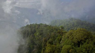 The Foja Mountains in West Papua.