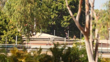 Detainees climbed onto roofs at the detention centre to protest at their treatment. <i>Picture: Glenn Campbell</i>