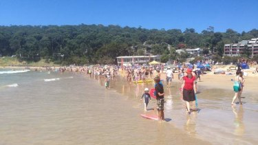 Swimmers on the beach at Lorne.