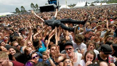 Surfing the Big Day Out crowd in Melbourne on January 24.