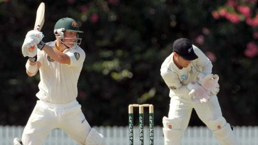 David Warner ... Better at Test cricket, according to Verinder Sehwag.