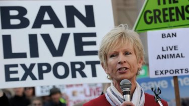 Lyn White speaking at the Ban Live Animals Export Rally at Parliament House earlier this month.
